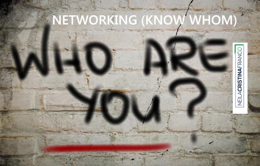 Networking (Know Whom) : Como está a sua capacidade de conectar-se e fazer-se conhecido e reconhecido?